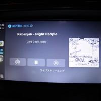 DS5 シトロエン  Apple CarPlay プジョー カープレイ iPhone12 YOUTUBE グーグルマップ デザリング DS4 DS7